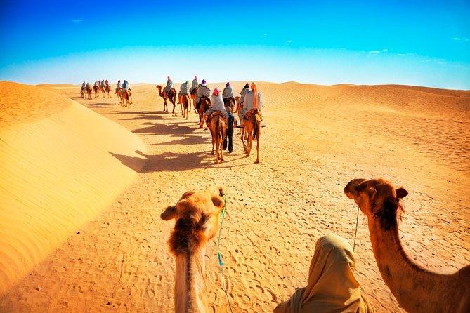 Camel Desert Safari The Best Travel Activity in Dubai