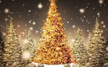 What is the symbolism of Christmas tree lights?
