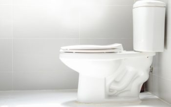 Benefits of choosing the right Best Flushing Toilet