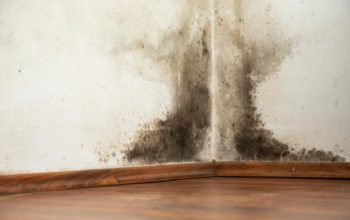 Conditions for Mold Growth in Houses
