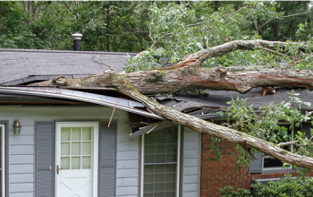 Guide to Wind Damage Property Claim Lawyer