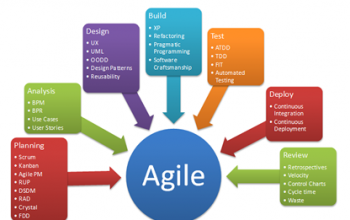 Agile Business Analyst: Role and Importance